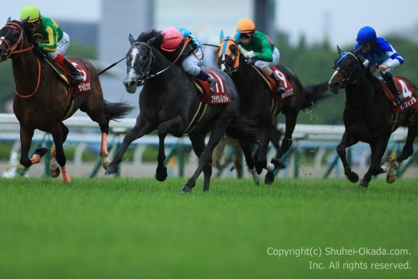 17京都新聞杯2