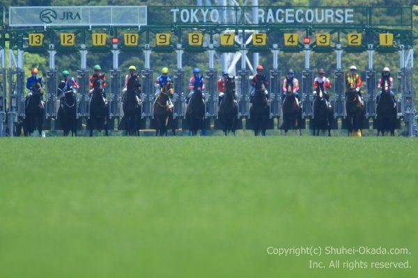 170521東京イメージ4