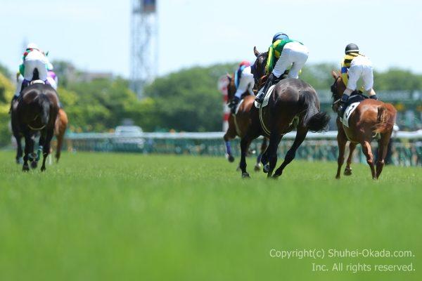 170604東京イメージ6