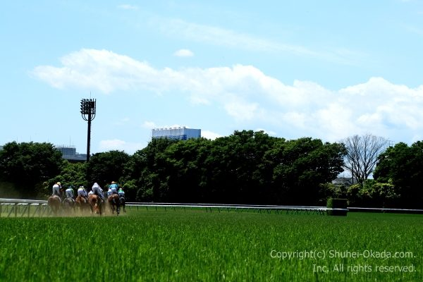 170604東京イメージ2