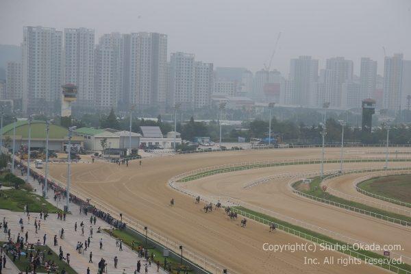 170910ソウル競馬場11