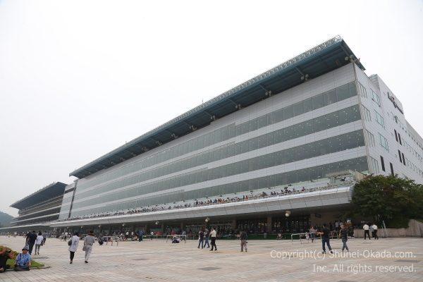 170910ソウル競馬場2