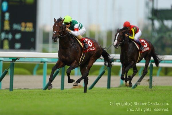 17神戸新聞杯2