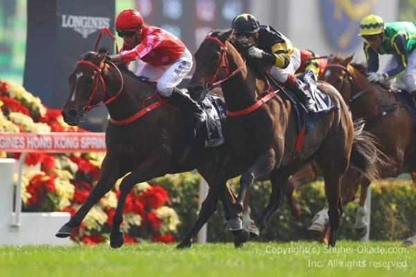 17香港スプリント3