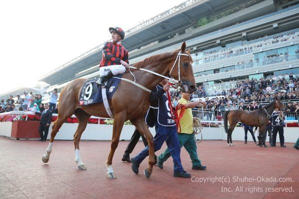17香港カップ13