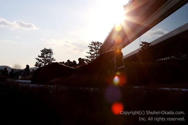 180204京都イメージ12