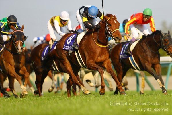 18高松宮記念3