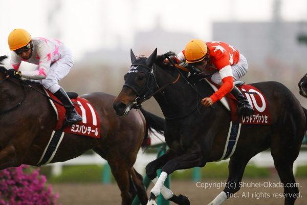 18阪神牝馬S3