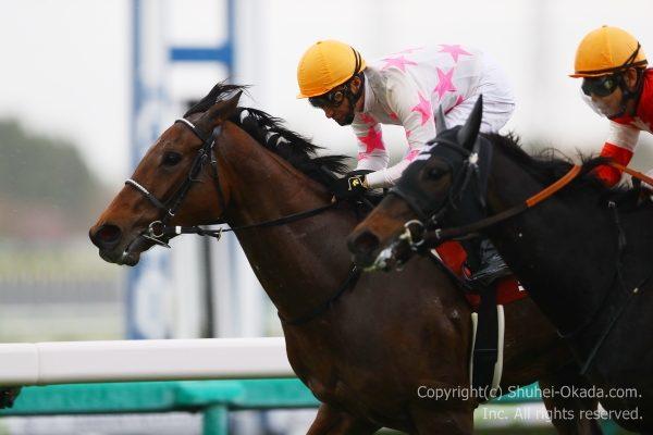 18阪神牝馬S5
