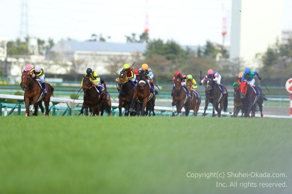 18桜花賞1