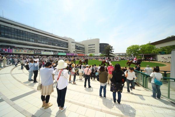 180422京都イメージ1