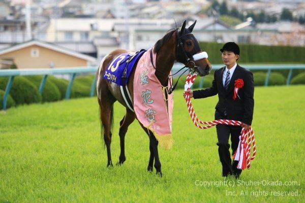 18桜花賞6