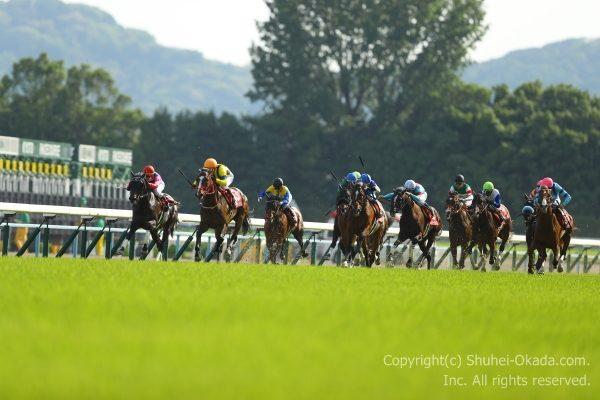 18京都新聞杯1