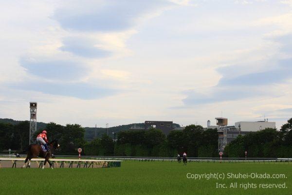 180506東京イメージ1