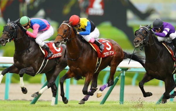 18神戸新聞杯3