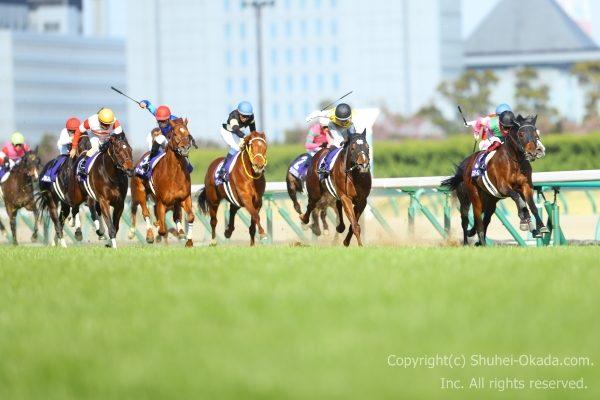 19高松宮記念2