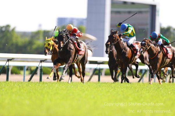 19京都新聞杯2